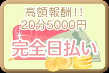 高額報酬20分 5000円完全日払い